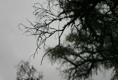 Murky, misty weather during the rainy season.