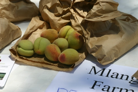 Peaches? In Kenya? What kind of sorcery is this?