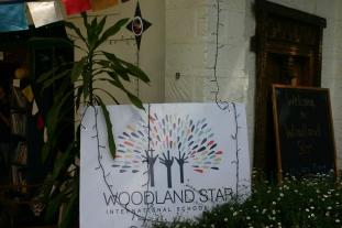 Our fantastic Woodland Star display at Harvest Festival.