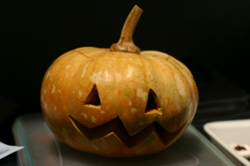 The first pumpkin I ever carved! It looks pretty dandy, if I do say so myself.