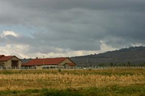 Farmland on the drive from Limuru to Gilgil.