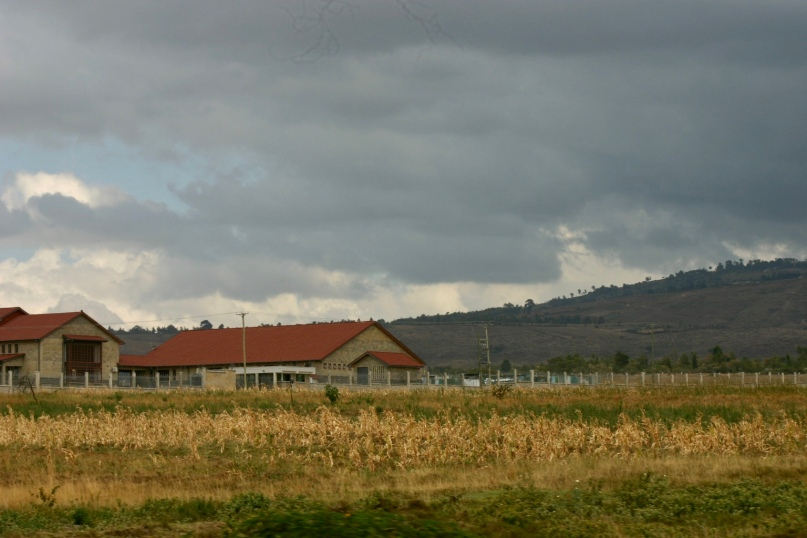 Farmland on the drive from Limuru to Gilgil.