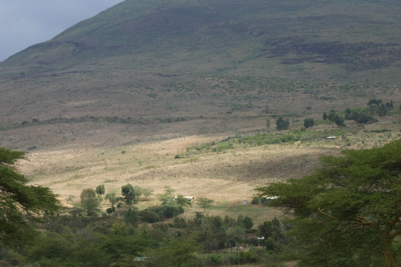 Rolling, light-touched crests and falls of the Rift Valley.