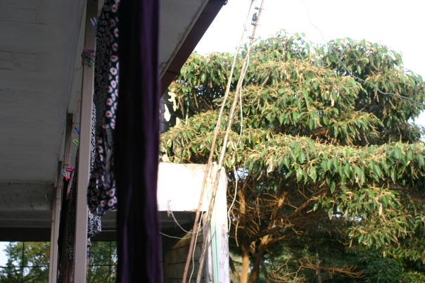 Hanging laundry outside my apartment on the second floor.